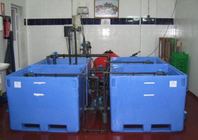 Depuradora de moluscos en Huelva